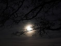 "Silke aus dem Kahmen -""Mädchen-Blog"": On 14.12.2016 - Full Moon in Gemini"