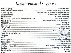 Things newfies say