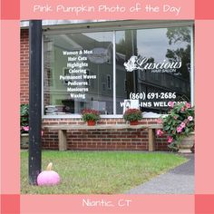 #PinkPumpkin #PhotoOfTheDay #SmithsAcresPumpkins #LusciousHairSalon#Niantic