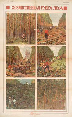 """Хозяйственная рубка леса"" [Properly cutting trees.] (1921)"
