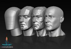AnatoRef | Planes of the Face Row 1 Row 2 (Lleft, Right), & 3...
