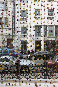 Rose Curtain, floral art, flowers, Rebecca Louise Law
