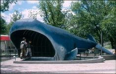 This finally solves a mystery of a memory for me! I couldn't imagine why I remembered walking into a whale! For all you fans who mentioned the blue whale as your favorite memory of the Kansas City Zoo of yesteryear. Us Travel Destinations, Family Vacation Destinations, Places To Travel, Family Vacations, St Louis City Museum, Kansas City Zoo, City Pride, Kansas City Missouri, Overland Park
