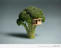 small world Sustainable Living 'Broccoli House' sustainability art architecture tree house miniture sculpture vegetable Top Photos, Creative Food Art, Creative People, Creative Artwork, Creative Things, Creative Ideas, Food Sculpture, Tiny World, Oeuvre D'art
