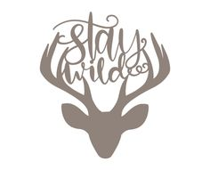 Stay wild 4330 free svg svg files for cricut Silhouette Cameo Projects, Silhouette Design, Silhouette Vinyl, Cricut Vinyl, Svg Files For Cricut, Cricut Air, Cricut Explore Air, Free Svg Cut Files, Cricut Creations