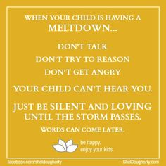 Parenting Tip: 3 Simple Rules - What NOT to Do When Your Child Has a Meltdown/Tantrum #parenting #sheldougherty.com