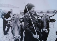 Ruth Matilda Anderson: Labrega galega com as vacas (Galiza, 1925)