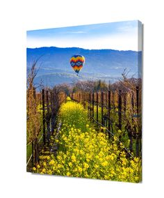 Wine Country Print, California Napa Valley Art, Napa Balloon Ride Decor, Spring Flowers Vineyard Photo, Wine Valley Canvas, Mustard Field