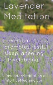 Do you combine your meditation – self awareness time with nature? What about #lavender and #meditation?