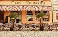 Verwöhnt euch mit leckeren Eisspezialitäten aus der Region, direkt vom Rhöner Bio-Bauer - das Café Neumann im Herzen von Meiningen! http://www.lokalfinder-thueringen.de/lokal/cafe-neumann