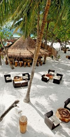 Sip unlimited cocktails at the tree-covered feet-in-the-sand Totem Bar.