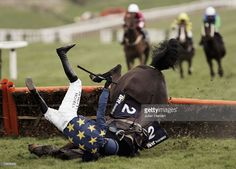 Ruby Walsh parts company with Black Harry at the last flight during The Brit Insurance Novices Hurdle Race run on the fourth day of The Annual National Hunt Festival held at Cheltenham Racecourse on March in Cheltenham, England. Cheltenham England, Cheltenham Racecourse, Horse Racing Books, Irish Racing, Gold Cup, Hurdles, Donkeys, Cross Country, Equestrian
