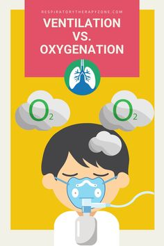 Ventilation vs Oxygenation vs Respiration - What is the Difference? This guide breaks down the definitions, similarities, and differences of each.#Ventilation #Oxygenation #Respiration #RespiratoryTherapy Respiratory Alkalosis, Respiratory Therapy, Respiratory System, Nursing School Tips, Nursing Career, Nursing Tips, Arterial Blood Gas, Intracranial Pressure, Mechanical Ventilation