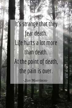 I think this quote relates to the novel because it shows how death and growing up before you die is a central idea in the book. It shows the idea that life is unfair to people, like with all the discrimination, but people can also die and be mature.