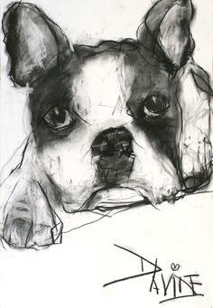 'Milo' Original Charcoal by Valerie Davide - Framed £410