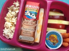 This is not a bad idea for kids who hate sandwiches. I would trade out the chocolate milk for a Lifeway Kefir Probug drink. Lunch Made Easy: {Allergy Friendly} School Lunchbox Ideas for Kids