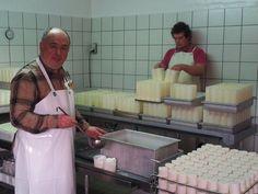 La fabrication des crottins de chèvre « Article «