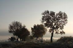 """Fotostrecken - Wetter Bilder und Fotos - WetterOnline Der Bilderherbst bei WetterOnline zum Thema """"Herbstnebel"""". Aufnahme von Katrin Zimmermann. Das Bild entstand an einem kühlen Novembermorgen."""