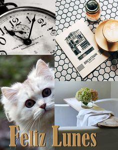Feliz lunes #buenosdias #mañanas #cafe #saludo #badebaño