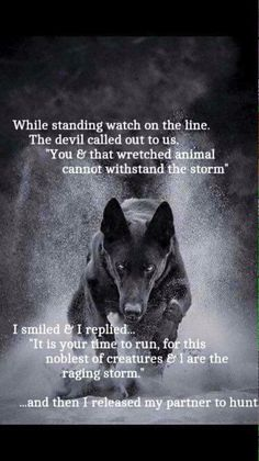 K-9 Wisdom Quotes, True Quotes, Great Quotes, Funny Quotes, Inspirational Quotes, Qoutes, Dalai Lama, Lone Wolf Quotes, Of Wolf And Man