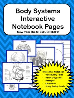 Body Systems Interactive Science Notebook from Stem Center on TeachersNotebook.com -  (101 pages)  - Section has a lot (101 PAGES) to offer! This INB is the most comprehensive that you will find. This INB is actually eight sections in one.