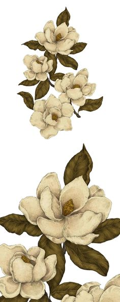 Bring a touch of southern elegance to your sitting room with this Magnolia Decal. From a noted Brooklyn illustrator, the rhythmic shapes and old school coloration of the magnolia blossoms, stems, and l... Find the Magnolia Decal, as seen in the The Bohemian Botanist Collection at http://dotandbo.com/collections/the-bohemian-botanist?utm_source=pinterest&utm_medium=organic&db_sku=115395