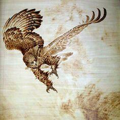 eagle pyrography | flyeaglea.jpg