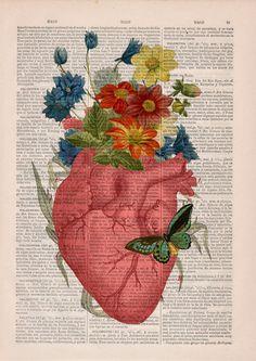 PRRINT ilustraciones anatomia flores 2