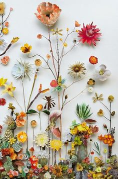 Wildly Obsessed The magically inventive 'Flower Constructions' of Anne Ten Donkelaar first caught my eye in some stream of images online with flowers in art. But when I had a moment to delve deeper. Arte Floral, Flower Wallpaper, Iphone Wallpaper, Dried Flowers, Paper Flowers, Belle Image Nature, Fleurs Diy, Pressed Flower Art, Jolie Photo