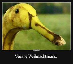 Vegane Weihnachtsgans. | Lustige Bilder, Sprüche, Witze, echt lustig