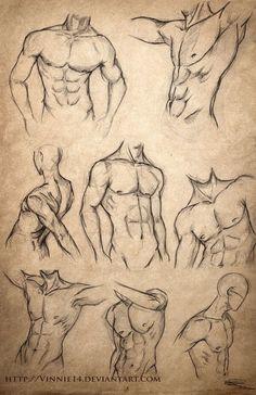 little torso
