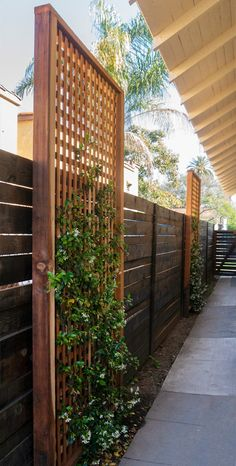 Landscape architecture and design consultation in West Los Angeles. Affordable design consultation for any landscape project. Privacy Fence Landscaping, Privacy Fence Designs, Backyard Privacy, Backyard Fences, Backyard Patio Designs, Small Backyard Landscaping, Backyard Projects, Modern Landscaping, Patio Ideas Townhouse