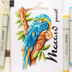 Bright bird to make your day more colorful ;) В выходные была в цирке и просмотрела номер, который раньше никогда не встречала, - шоу…