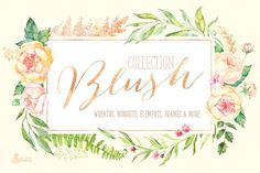 Ad:  Professional quality hand painted watercolor illustrations.$21  Blush. Floral Collection by OctopusArtis on @creativemarket