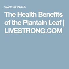 The Health Benefits of the Plantain Leaf | LIVESTRONG.COM