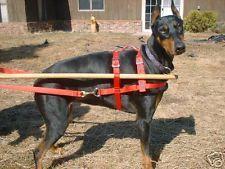Sled, Cart, Wagon, dog harness 40 - 60#
