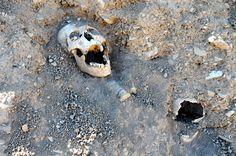 skulls and bones exposed in mass grave near Van - Armenian Genocide 1915