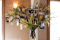 Family Tree idea was a collaboration of Wedding Coordinators: Evonne Grabauskas & Melody Farrar of Beautiful Celebrations and Florist: Ria Erikson of Nature's Grace Design. Photography: Asharae Marie Photography.
