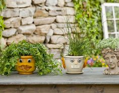 Get Happy: Gardening May Reduce Depression and Stress
