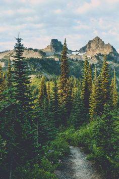 Imagem de nature, forest, and mountains