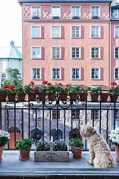 Eriksbergsgatan #Lagerlings #Östermalm #Stockholm