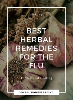 Herbal remedies for flu symptoms are good to have on hand both in an emergency and for overall self reliance.