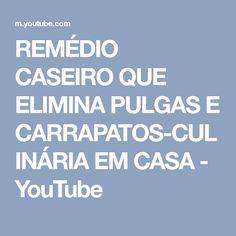 REMÉDIO CASEIRO QUE ELIMINA PULGAS E CARRAPATOS-CULINÁRIA EM CASA - YouTube