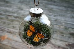 Butterfly Christmas Ornament.  #Butterfly #Moss #DIY #Christmas #Ornament #Craft #Project #Nature