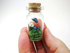 Inside of this glass bottle is a peaceful Blue Morpho butterfly paradise!  Place it on your desk top, kitchen window or wherever you like as a