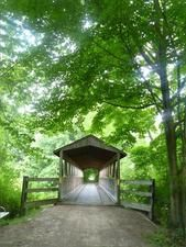 Kal-Haven Trail, South Haven, Michigan -- great biking & hiking, as well as snowmobiling in the winter