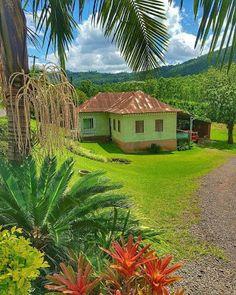 casa mato verde salvo casas fazenda