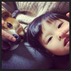 Boooo #dog #corgi