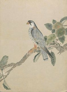 BibliOdyssey: from an ink-wash and watercolour album of birds produced in Japan in the 19th century