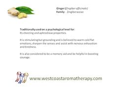 West Coast Aromatherapy - Google+
